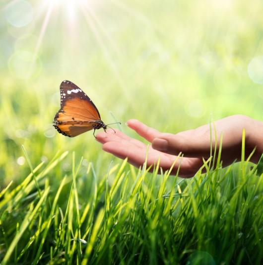 Développement durable comme première exigence.