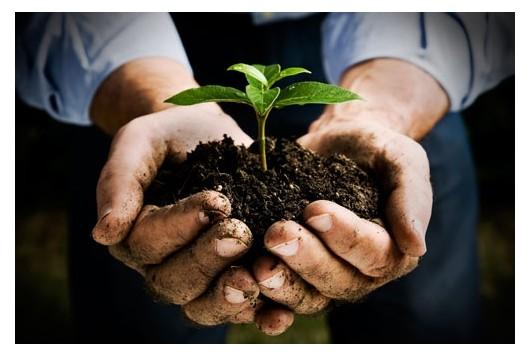 Duurzaamheid voor een mooiere wereld